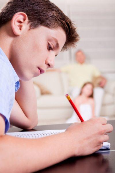 essays about homework